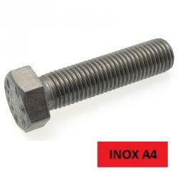 Blister 5 vis TH inox A4 12x60
